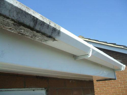 Gutter and Fascia Cleaning Brighton